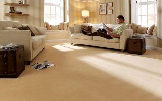 Быстро вымыть ковролин в доме – легко!
