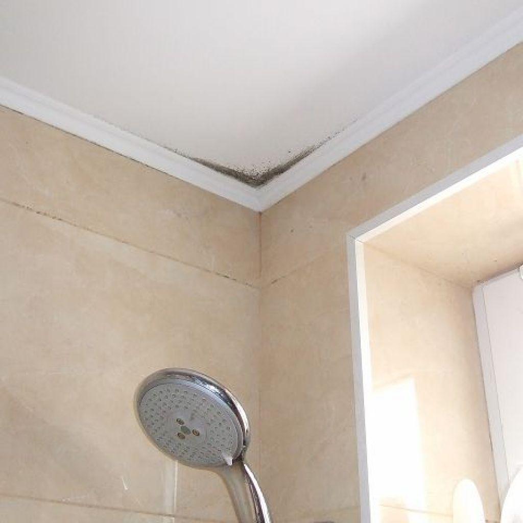 Традиционные средства борьбы с плесенью на потолке в ванной