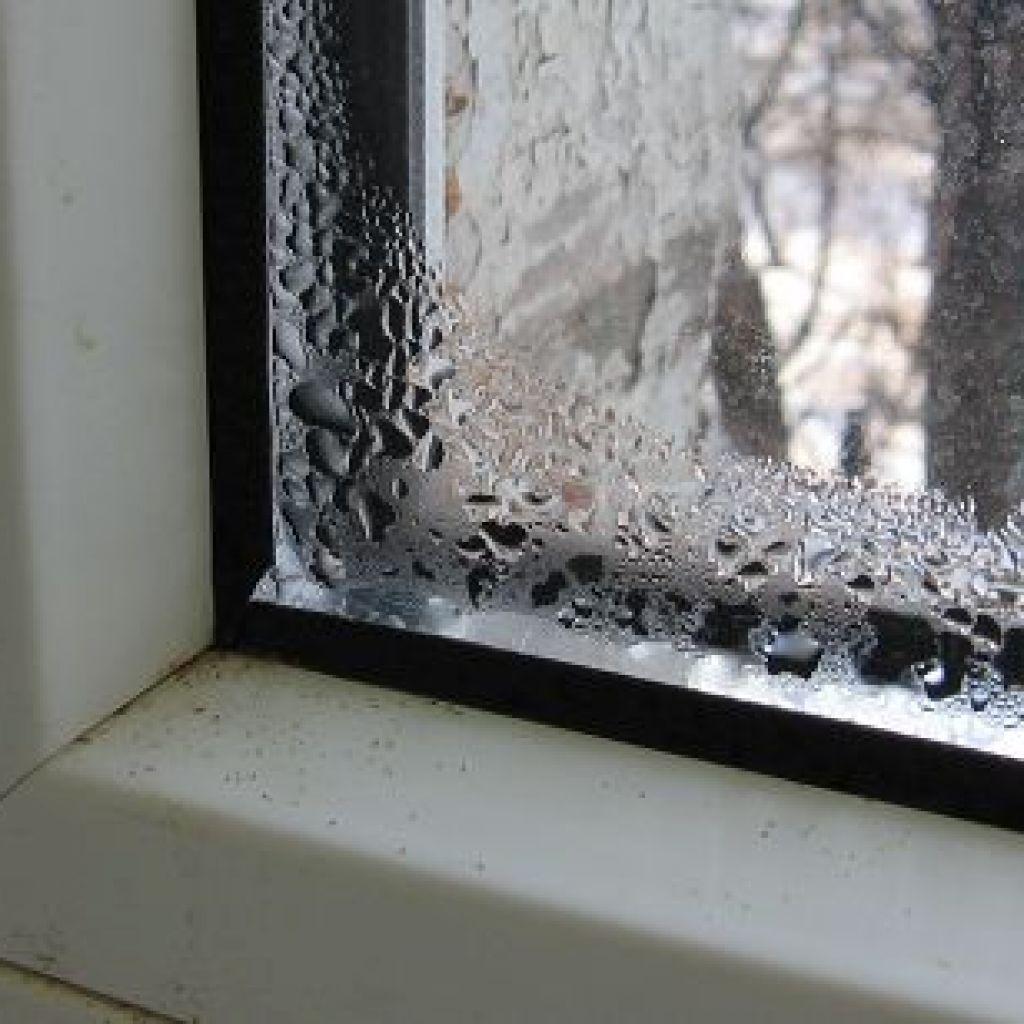 Откуда берётся грибок на пластиковых окнах