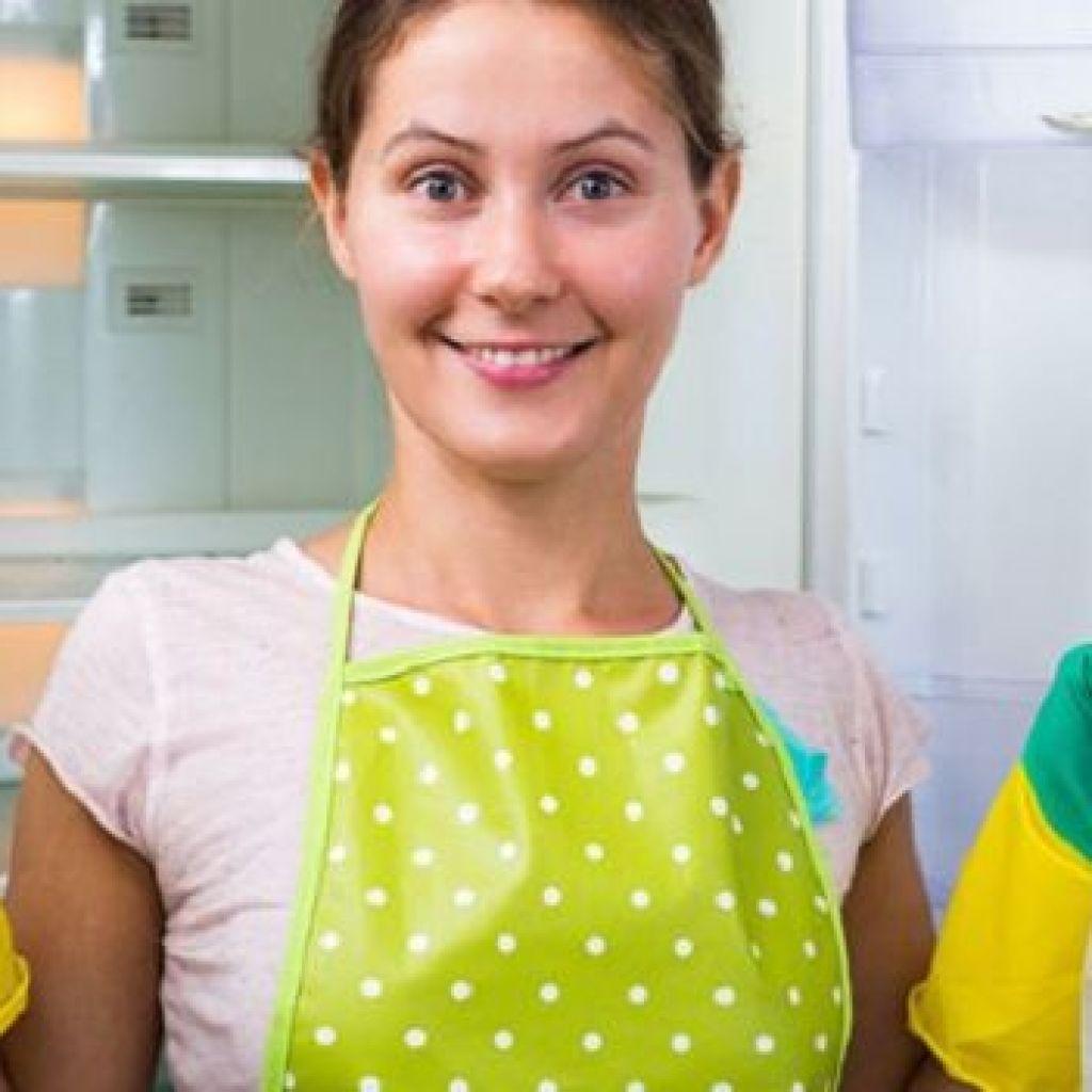 Чистка и дезинфекция своими силами – избавляемся от плесени в холодильнике