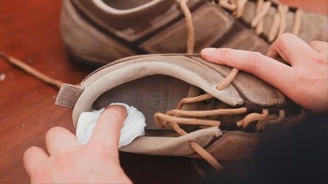 Запах кошачей мочи в обуви