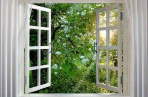 Открытое в окно