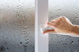 Плесень на пластиковых окнах