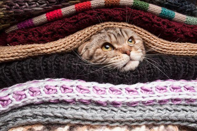 Шерстяной свитер сел после стирки